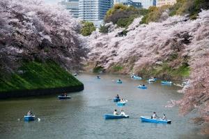 TOUR NHẬT BẢN - TOKYO-PHÚ SĨ-NAGOYA-KYOTO-OSAKA-WAKAYAMA (27/03)